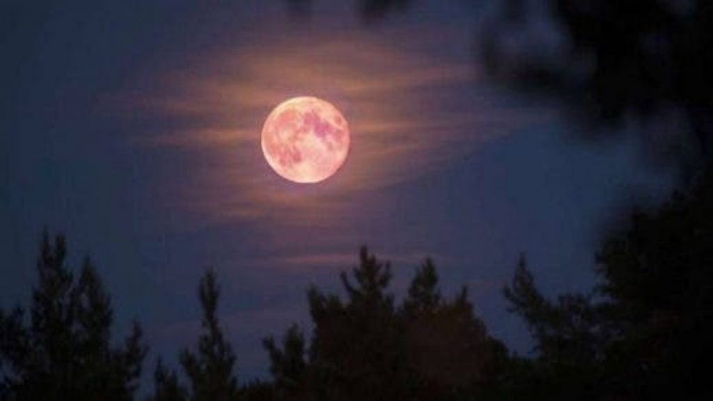 Tonight, check out the first Super Moon of 2021!