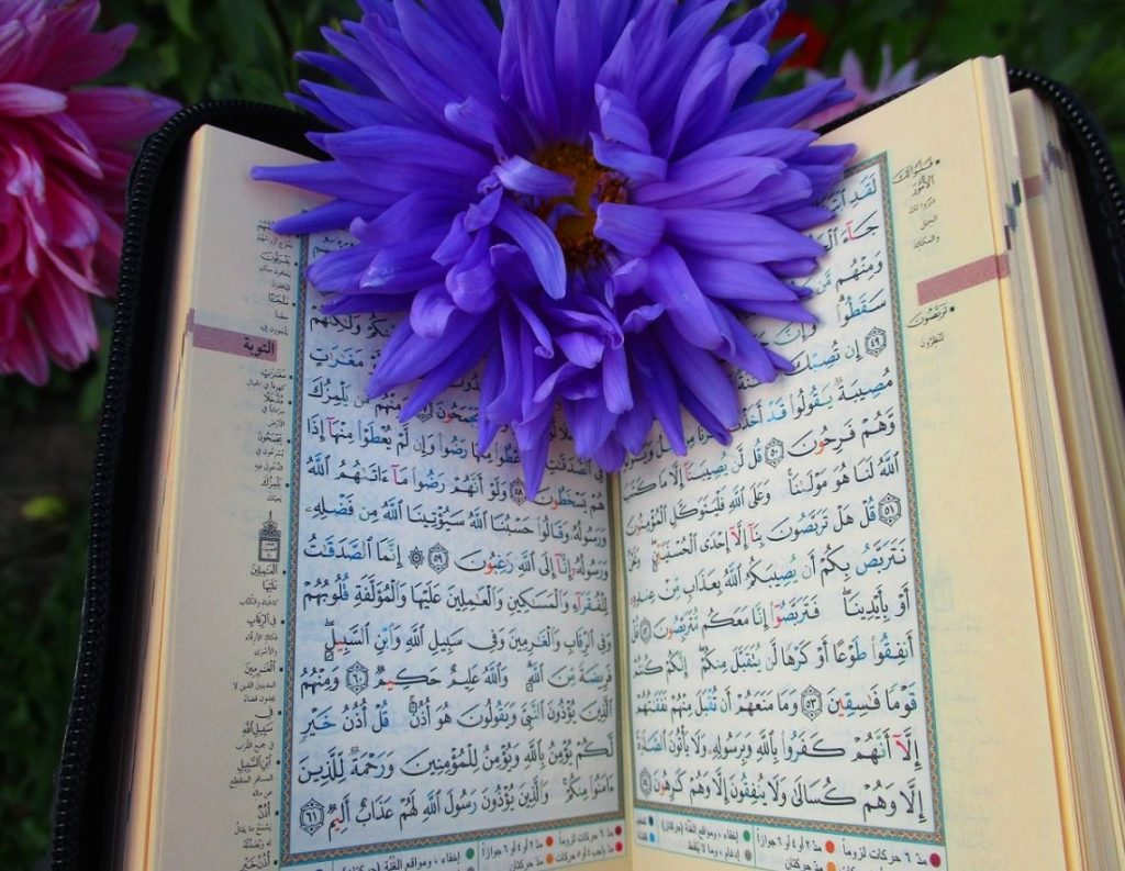Review: The Qur'an and Women