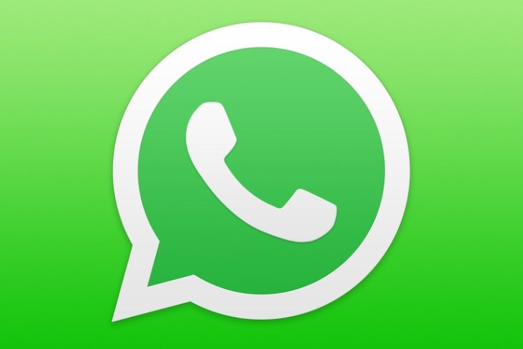 WhatsApp: Finally, there are no restrictions for those who do not accept the new terms of use