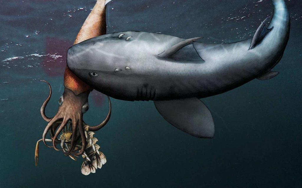 Alors qu'il mangeait un crustacé, un céphalopode préhistorique est tué par un requin. Le crustacé et le céphalopode ont été découverts fossilisés ensemble. © Christian Klug et al., Swiss Journal of Paleotonlogy
