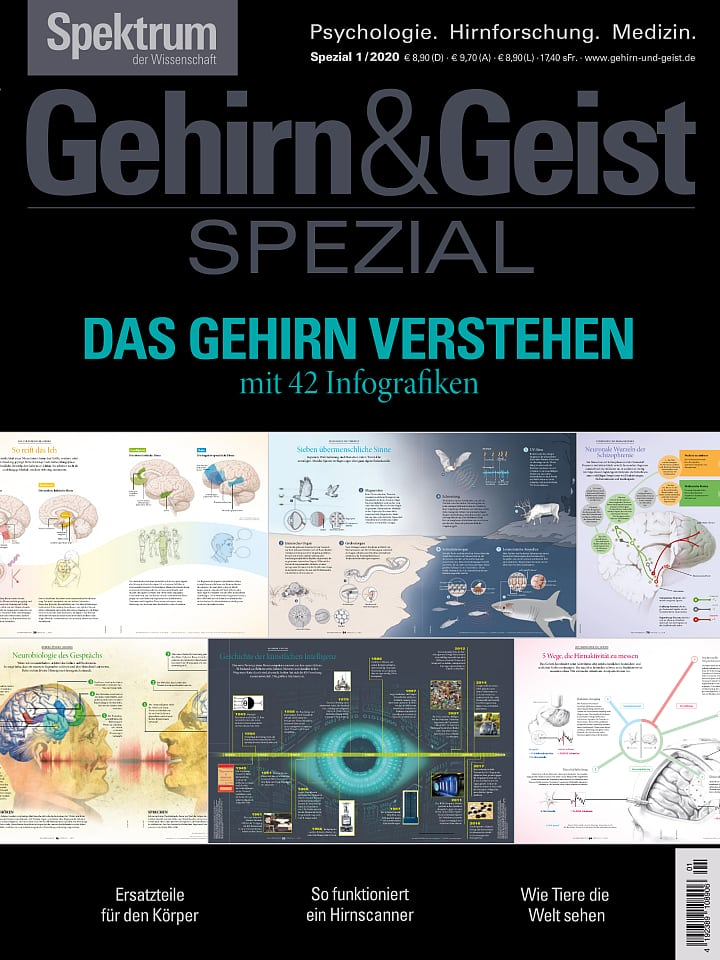 Brain and Mind magazine cover Special 1/2020 Understanding the Brain