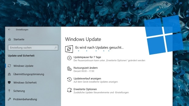 Initially, only a few users were offered Windows 11 with Windows Update.